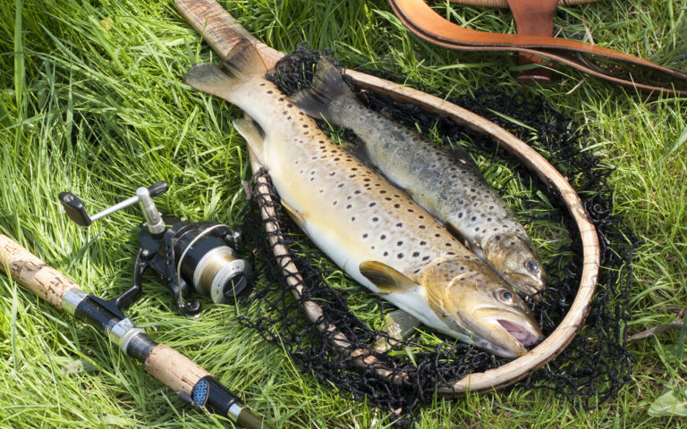 Fishing_rod_531497_2880x1800