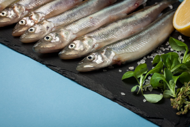 frischer-seefisch-roch-oder-sardinen_79782-1123